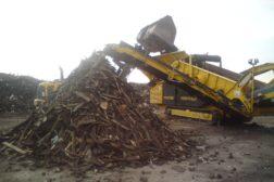 Sortering av trä och fils